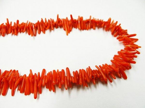 画像1: 枝サンゴ赤(染色品)